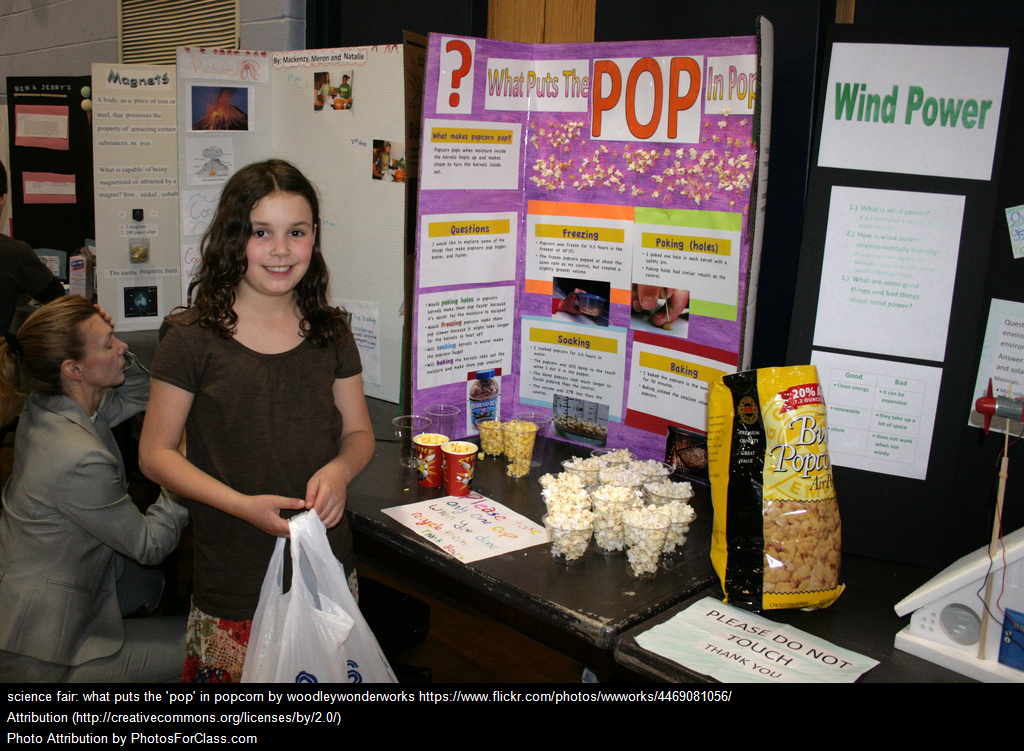 Science Fairs: Yea or Nay?