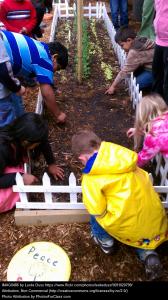 kids_garden