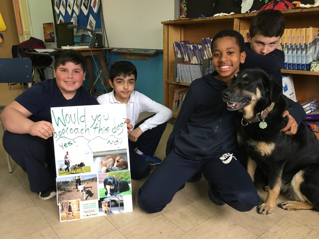 Animals in School? Fostering empathy through civic engagement