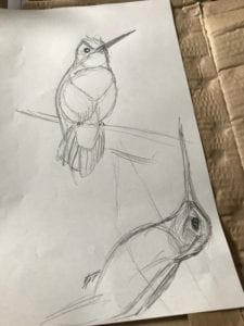 Image of bird sketch to show art process from sketch to cardboard version