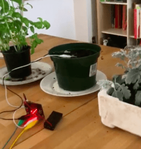 Plant Monitor with Micro-bit