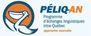 PELIQ-an logo