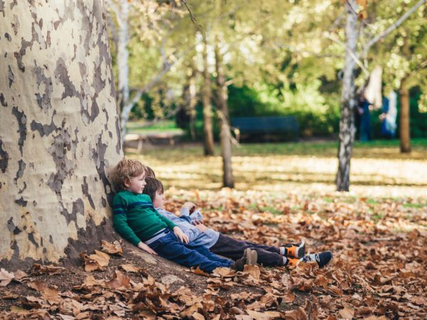 boys lean against large tree with feet in fall leaves