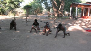 Zambia action theatre group